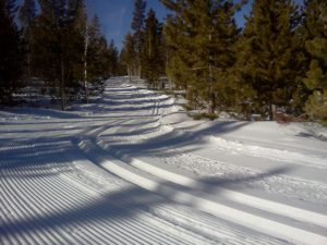 Nordic and Cross country Ski trail