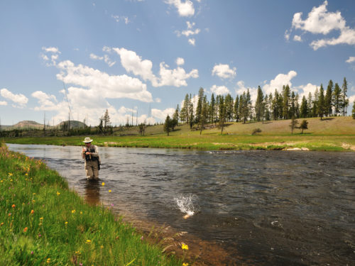 A man reeling in a fish while fly fishing near our casino in Wyoming